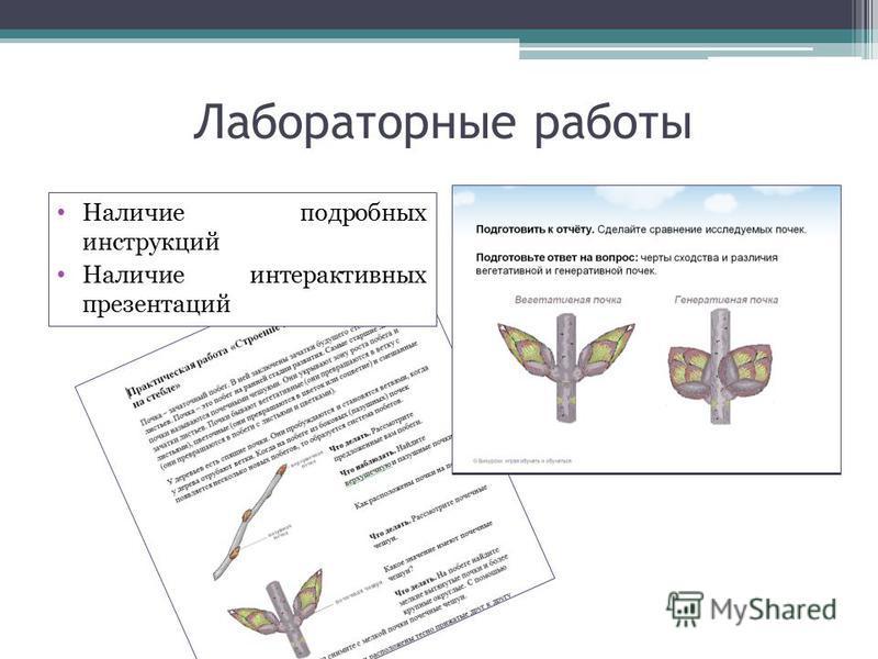 Лабораторные работы Наличие подробных инструкций Наличие интерактивных презентаций