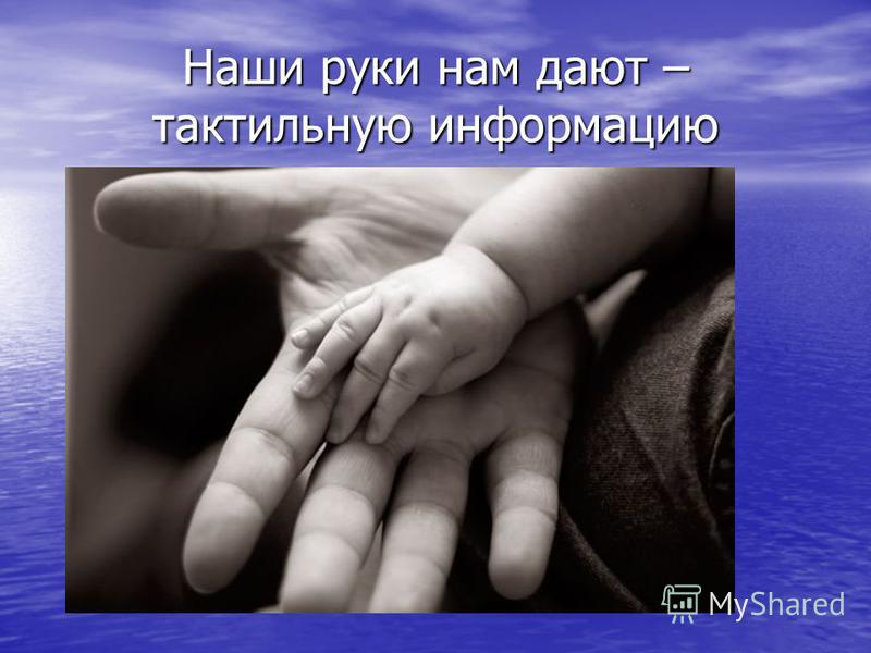 Наши руки нам дают – тактильную информацию
