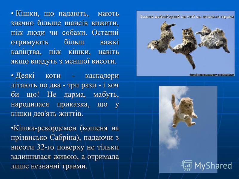 Кішки, що падають, мають значно більше шансів вижити, ніж люди чи собаки. Останні отримують більш важкі каліцтва, ніж кішки, навіть якщо впадуть з меншої висоти. Кішки, що падають, мають значно більше шансів вижити, ніж люди чи собаки. Останні отриму