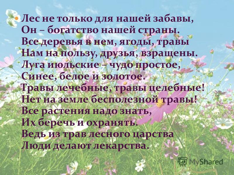 Лес не только для нашей забавы, Он – богатство нашей страны. Все деревья в нем, ягоды, травы Нам на пользу, друзья, взращены. Луга июльские – чудо простое, Синее, белое и золотое. Травы лечебные, травы целебные! Нет на земле бесполезной травы! Все ра