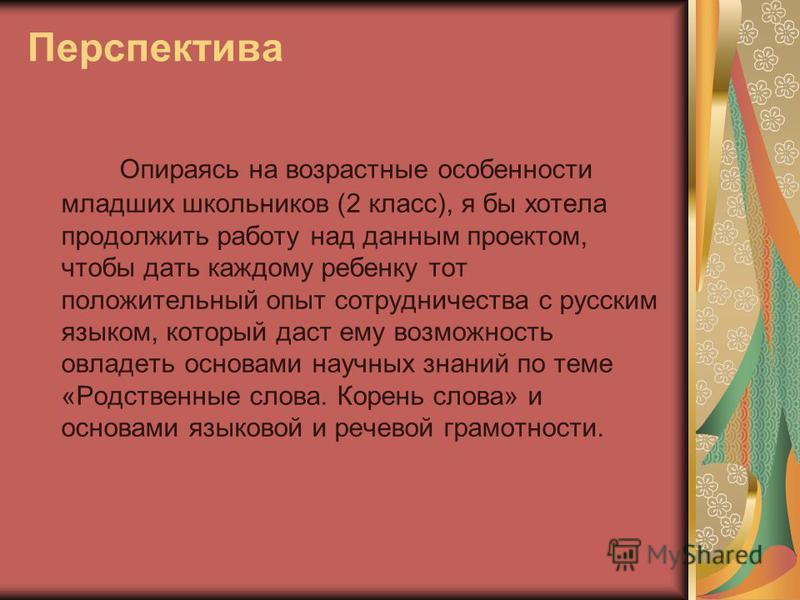 Перспектива Опираясь на возрастные особенности младших школьников (2 класс), я бы хотела продолжить работу над данным проектом, чтобы дать каждому ребенку тот положительный опыт сотрудничества с русским языком, который даст ему возможность овладеть о