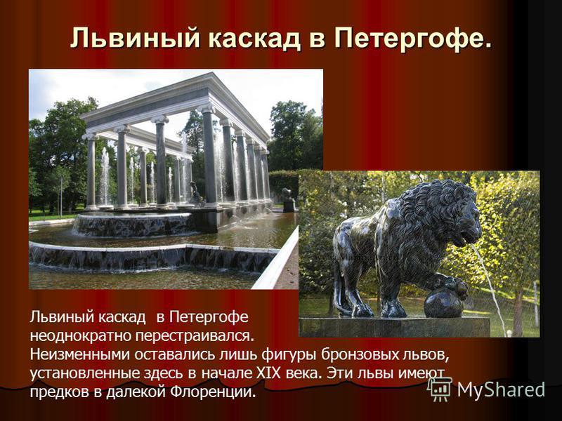 Львиный каскад в Петергофе. Львиный каскад в Петергофе неоднократно перестраивался. Неизменными оставались лишь фигуры бронзовых львов, установленные здесь в начале XIX века. Эти львы имеют предков в далекой Флоренции.