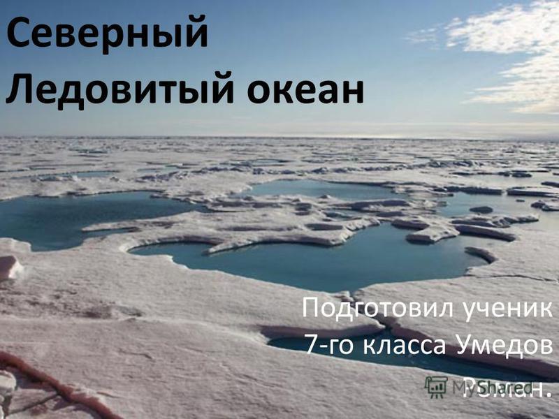 Подготовил ученик 7-го класса Умедов Роман. Северный Ледовитый океан