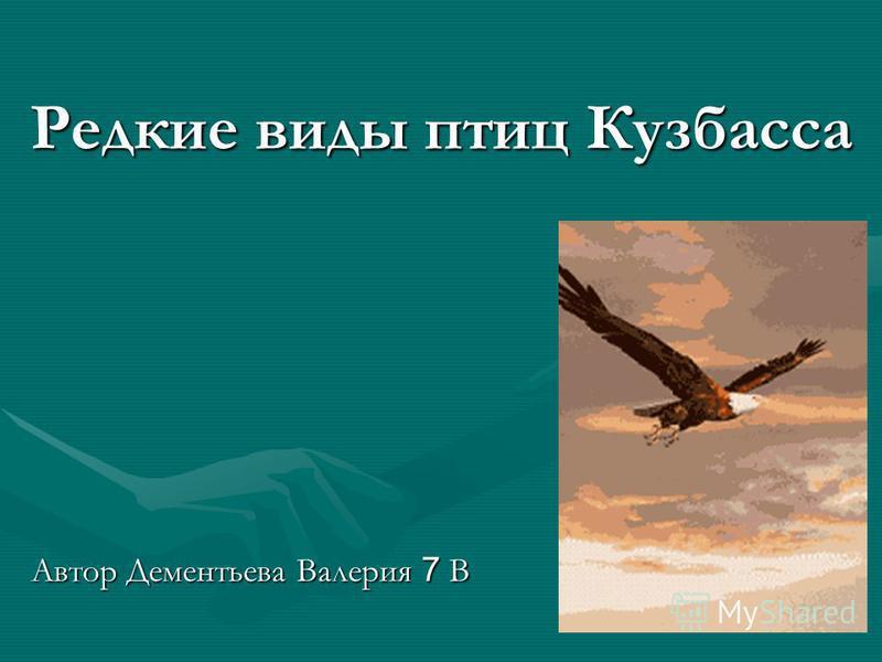 Редкие виды птиц Кузбасса Автор Дементьева Валерия 7 В