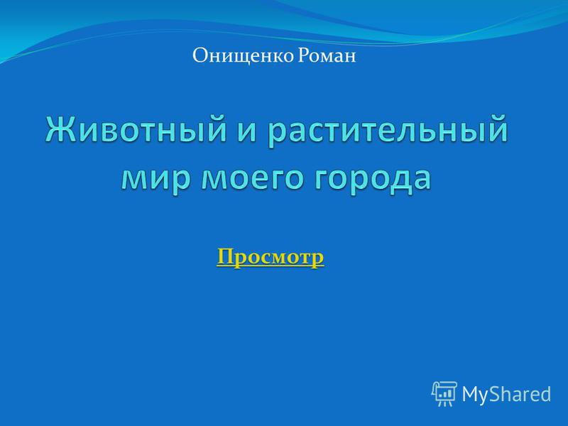 Онищенко Роман Просмотр