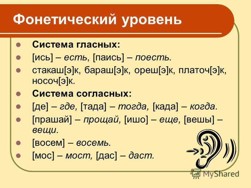 Фонетический уровсень Система гласных: [ись] – есть, [паись] – поесть. стакан[э]к, бараш[э]к, орешь[э]к, платоч[э]к, носач[э]к. Система согласных: [де] – где, [та да] – тогда, [когда] – когда. [прашай] – прощай, [ишо] – еще, [выше] – всещи. [восемь]