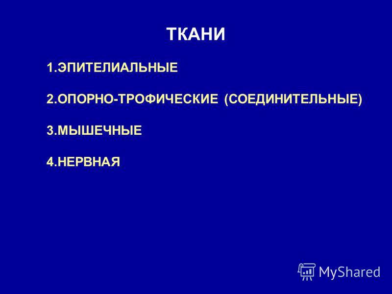 ТКАНИ 1. ЭПИТЕЛИАЛЬНЫЕ 2.ОПОРНО-ТРОФИЧЕСКИЕ (СОЕДИНИТЕЛЬНЫЕ) 3. МЫШЕЧНЫЕ 4.НЕРВНАЯ