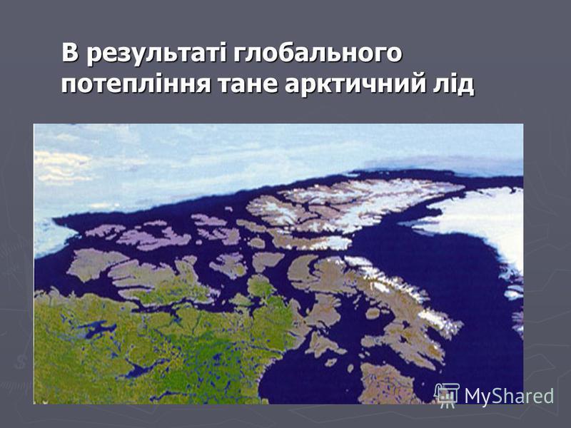 В результаті глобального потепління тане арктичний лід В результаті глобального потепління тане арктичний лід