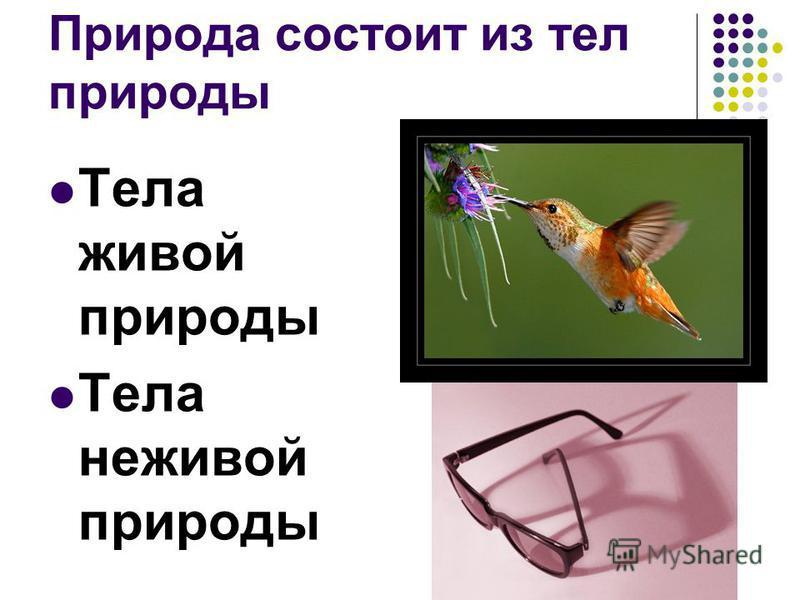 Природа состоит из тел природы Тела живой природы Тела неживой природы