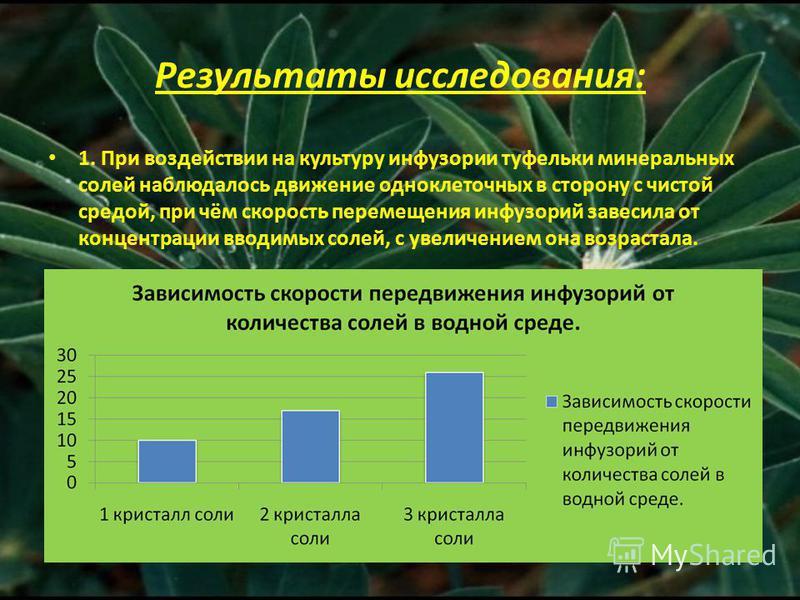 Результаты исследования: 1. При воздействии на культуру инфузории туфельки минеральных солей наблюдалось движение одноклеточных в сторону с чистой средой, при чём скорость перемещения инфузорий завесила от концентрации вводимых солей, с увеличением о