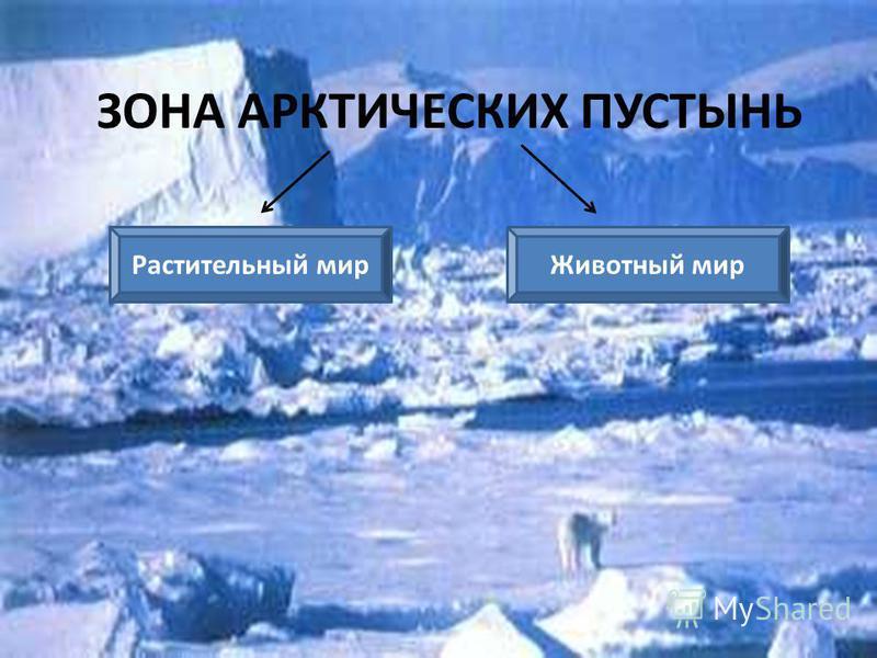 Природные зоны Арктика Степь Пустыня Лес Тундра Технологический приём Опорный конспект