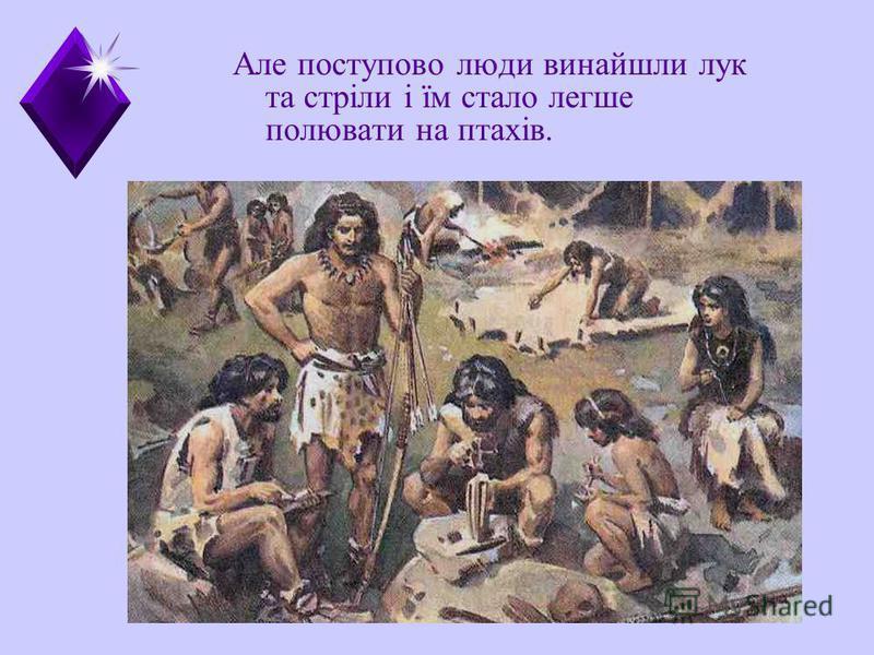 Але поступово люди винайшли лук та стріли і їм стало легше полювати на птахів.
