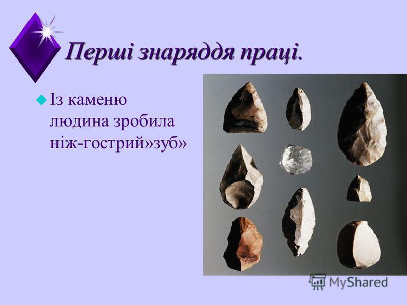 Перші знаряддя праці. u Із каменю людина зробила ніж-гострий»зуб»
