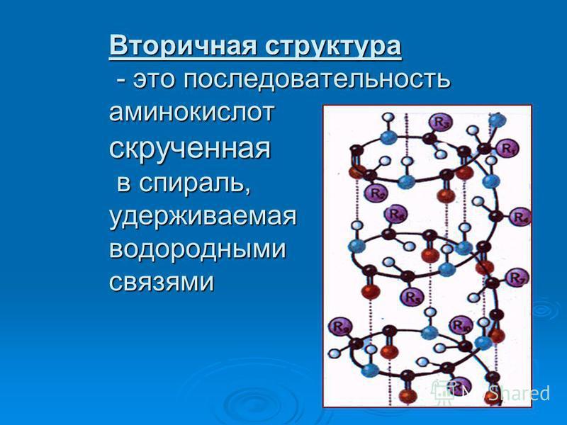 Вторичная структура - это последовательность аминокислот скрученная в спираль, удерживаемая водородными связями
