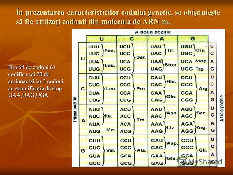 În prezentarea caracteristicilor codului genetic, se obişnuieşte să fie utilizaţi codonii din molecula de ARN-m. Din 64 de codoni 61 codifica cei 20 de aminoacizi iar 3 codoni au semnificatia de stop UAA,UAG,UGA