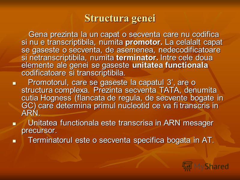 Structura genei Gena prezinta la un capat o secventa care nu codifica si nu e transcriptibila, numita promotor. La celalalt capat se gaseste o secventa, de asemenea, nedecodificatoare si netranscriptibila, numita terminator. Intre cele doua elemente