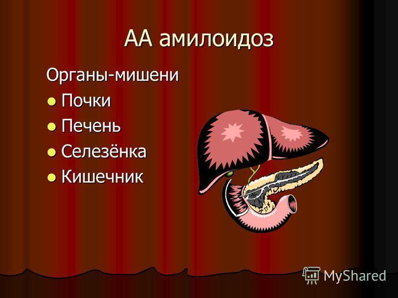 АА амилоидоз Органы-мишени Почки Почки Печень Печень Селезёнка Селезёнка Кишечник Кишечник