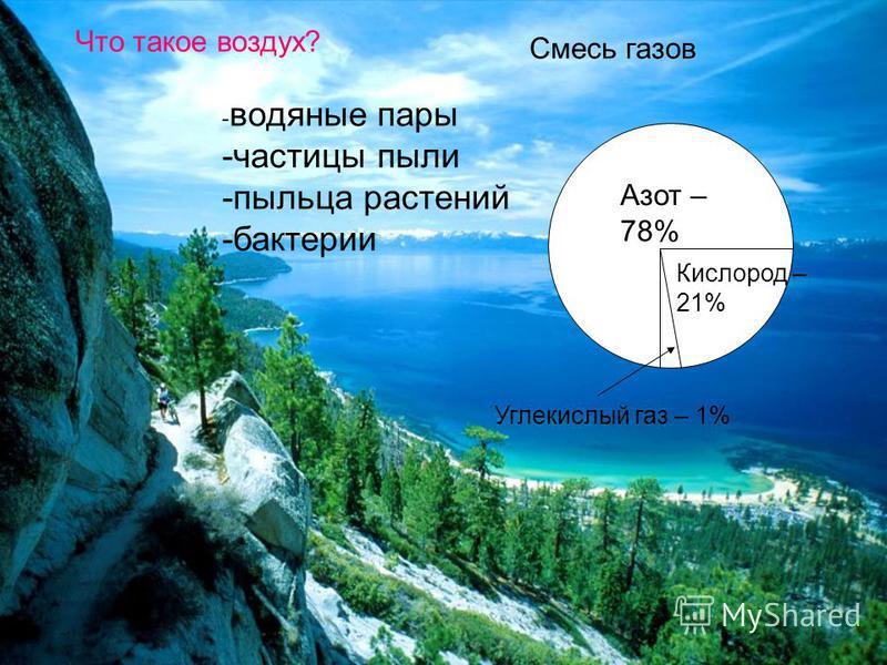 Что такое воздух? Смесь газов Азот – 78% Кислород – 21% Углекислый газ – 1% - водяные пары -частицы пыли -пыльца растений -бактерии
