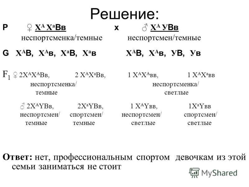 Решение: Р X А X а Вв х X А У Вв не спортсменка/темные не спортсмен/темные G X А В, X А в, X а В, X а в X А В, X А в, У В, У в F 1 2X А X А Вв, 2 X А X а Вв, 1 X А X А вв, 1 X А X а вв не спортсменка/ не спортсменка/ темные светлые 2X А YВв, 2X а YВв