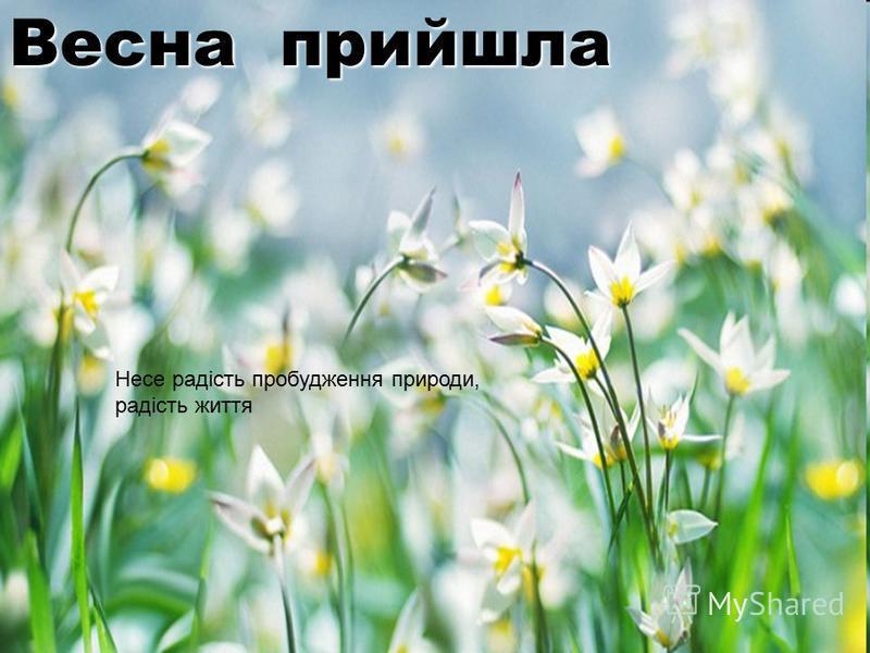 Весна прийшла Несе радість пробудження природи, радість життя