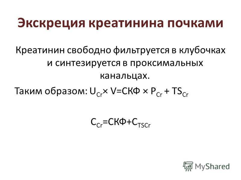 Экскреция креатинина почками Креатинин свободно фильтруется в клубочках и синтезируется в проксимальных канальцах. Таким образом: U Cr × V=СКФ × P Cr + TS Cr C Cr =СКФ+C TSCr