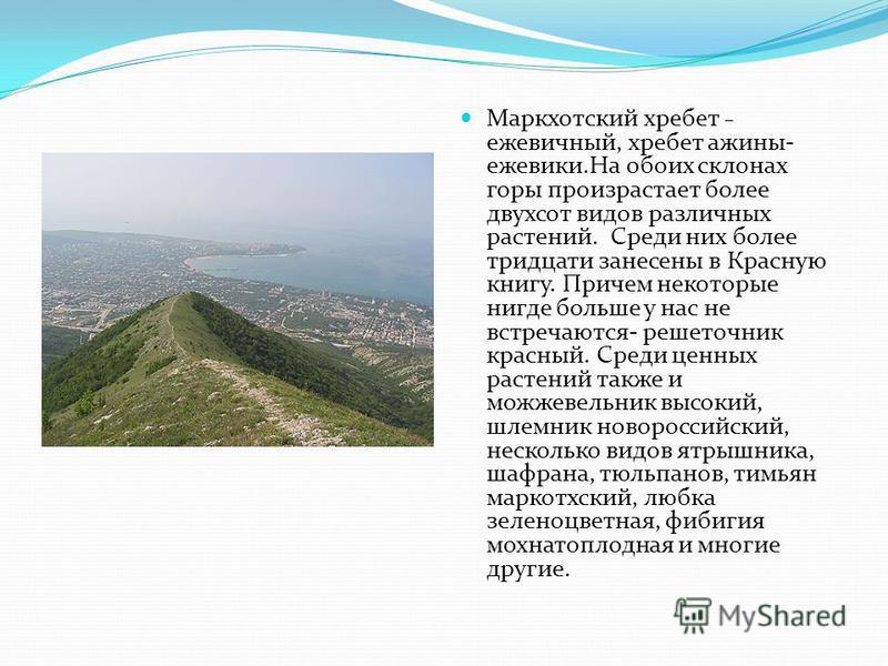 Маркхотский хребет – ежевичный, хребет ажины- ежевики.На обоих склонах горы произрастает более двухсот видов различных растений. Среди них более тридцати занесены в Красную книгу. Причем некоторые нигде больше у нас не встречаются- решеточник красный