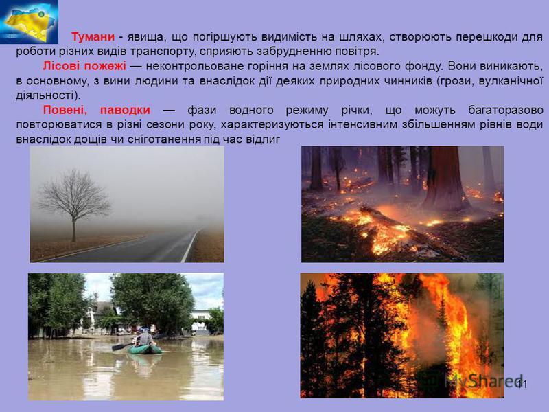 11 Тумани - явища, що погіршують видимість на шляхах, створюють перешкоди для роботи різних видів транспорту, сприяють забрудненню повітря. Лісові пожежі неконтрольоване горіння на землях лісового фонду. Вони виникають, в основному, з вини людини та