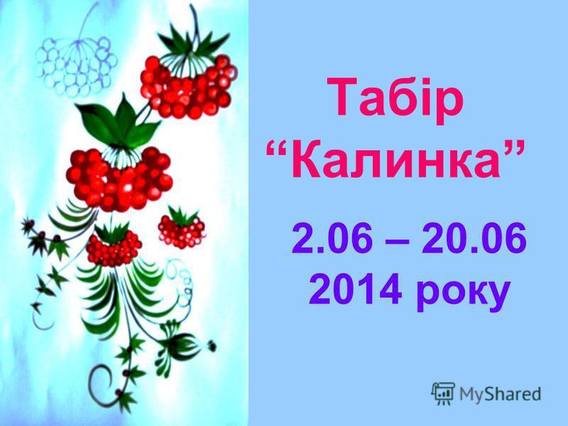 Табір Калинка 2.06 – 20.06 2014 року
