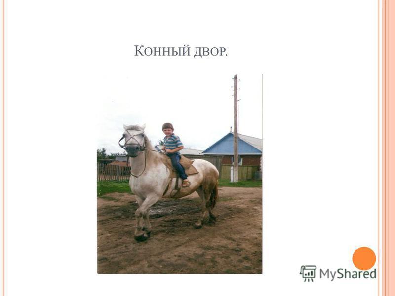 К ОННЫЙ ДВОР.