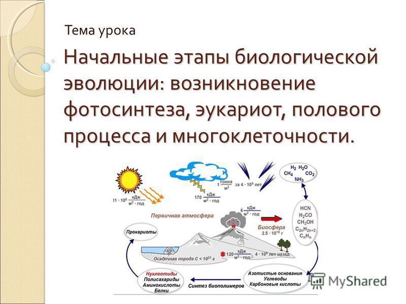 Начальные этапы биологической эволюции: возникновение фотосинтеза, эукариот, полового процесса и многоклеточности. Тема урока