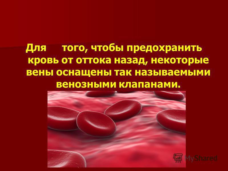 Для того, чтобы предохранить кровь от оттока назад, некоторые вены оснащены так называемыми венозными клапанами.