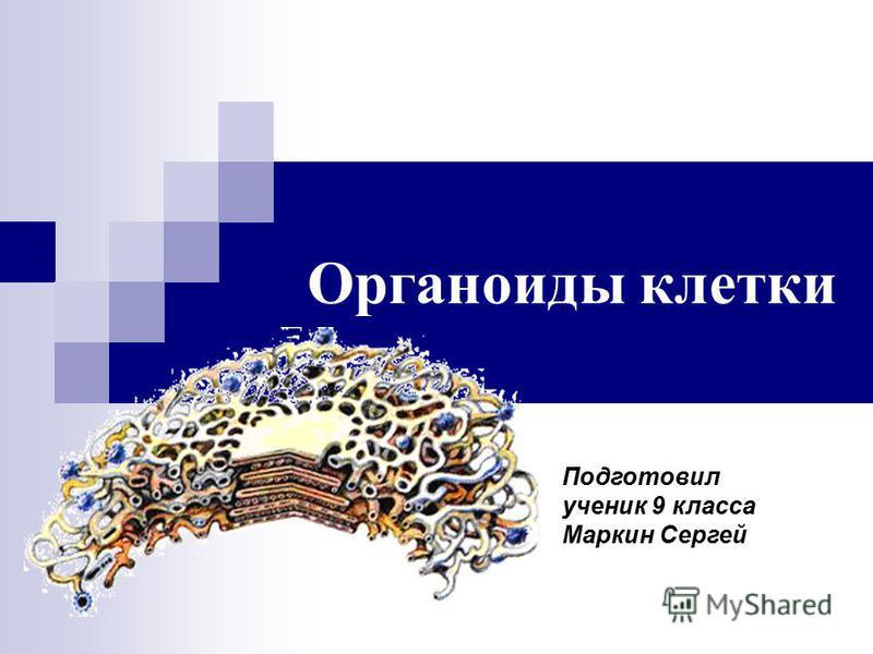 Органоиды клетки Подготовил ученик 9 класса Маркин Сергей