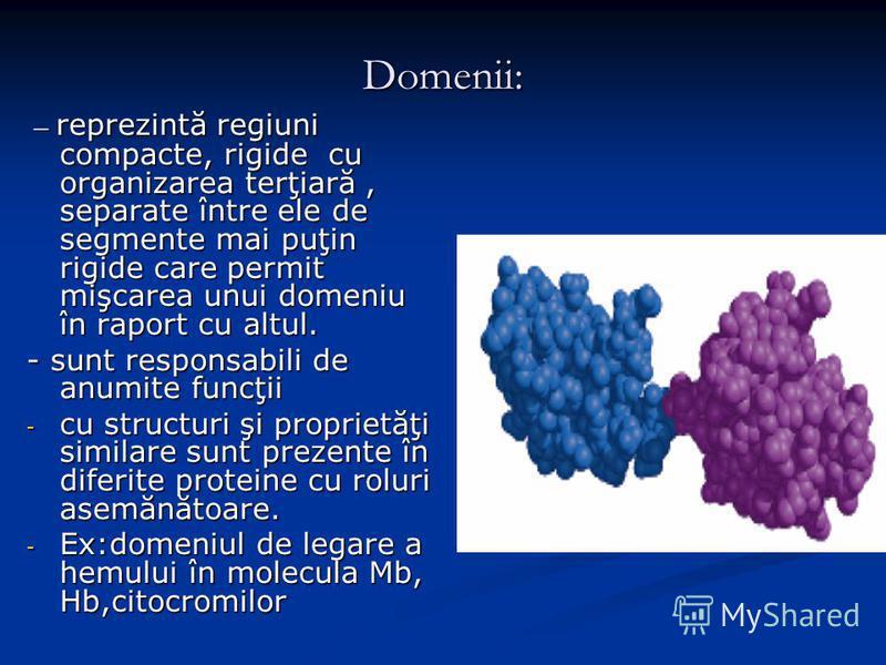 Domenii: – reprezintă regiuni compacte, rigide cu organizarea terţiară, separate între ele de segmente mai puţin rigide care permit mişcarea unui domeniu în raport cu altul. – reprezintă regiuni compacte, rigide cu organizarea terţiară, separate într