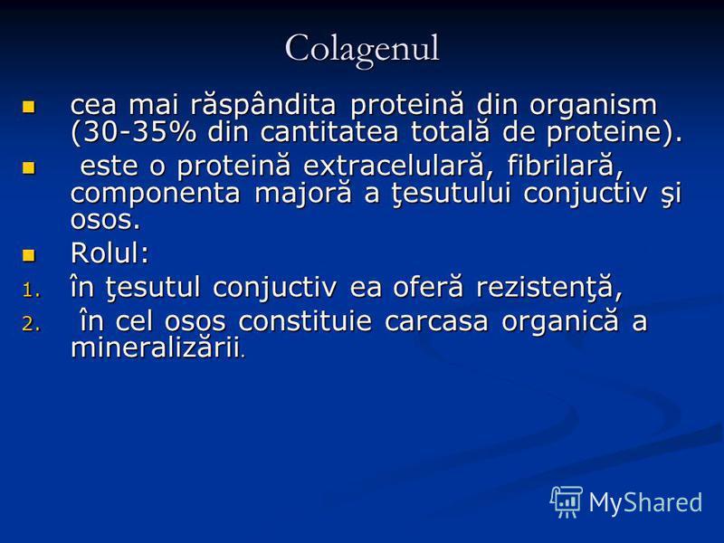 Colagenul cea mai răspândita proteină din organism (30-35% din cantitatea totală de proteine). cea mai răspândita proteină din organism (30-35% din cantitatea totală de proteine). este o proteină extracelulară, fibrilară, componenta majoră a ţesutulu