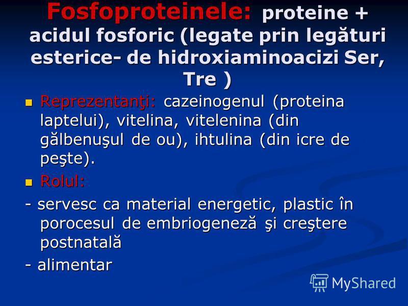Fosfoproteinele: proteine + acidul fosforic (legate prin legături esterice- de hidroxiaminoacizi Ser, Tre ) Reprezentanţi: cazeinogenul (proteina laptelui), vitelina, vitelenina (din gălbenuşul de ou), ihtulina (din icre de peşte). Reprezentanţi: caz