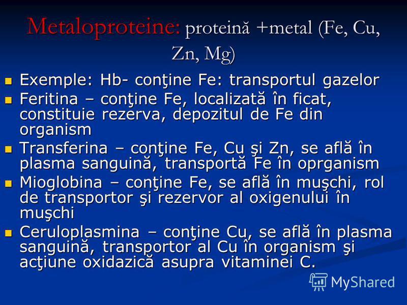 Metaloproteine: proteină +metal (Fe, Cu, Zn, Mg) Exemple: Hb- conţine Fe: transportul gazelor Exemple: Hb- conţine Fe: transportul gazelor Feritina – conţine Fe, localizată în ficat, constituie rezerva, depozitul de Fe din organism Feritina – conţine