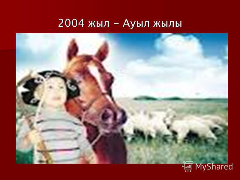 2004 жыл - Ауыл жылы