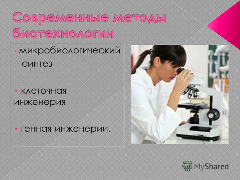 микробиологический синтез клеточная инженерия генная инженерии.