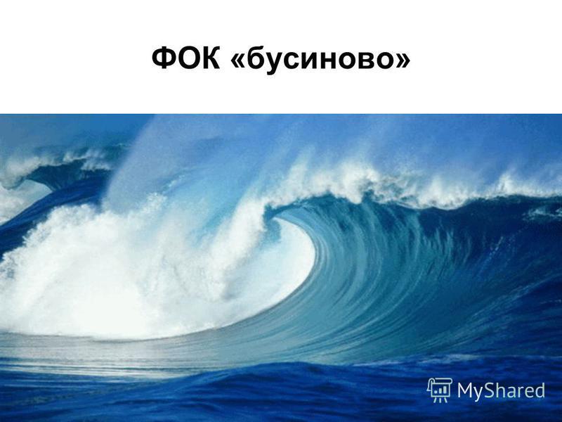 ФОК «бусиново»
