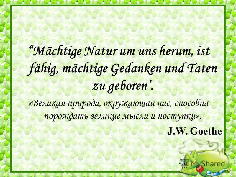 Mächtige Natur um uns herum, ist fähig, mächtige Gedanken und Taten zu geboren. «Великая природа, окружающая нас, способна порождать великие мысли и поступки». J.W. Goethe