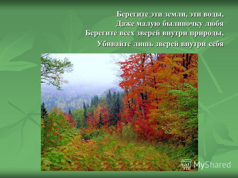 Берегите эти земли, эти воды, Даже малую былиночку любя Берегите всех зверей внутри природы, Убивайте лишь зверей внутри себя