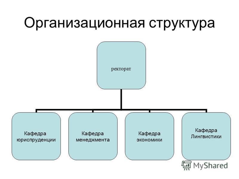 Организационная структура ректорат Кафедра юриспруденции Кафедра менеджмента Кафедра экономики Кафедра Лингвистики