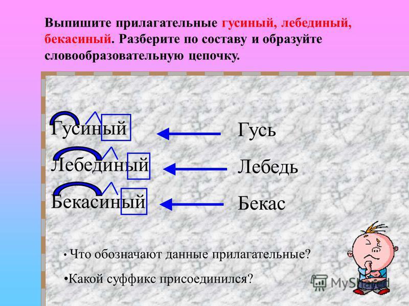 Гусиный Лебединый Бекасиный Что обозначают даные прилагательные? Какой суффикс присоединился? Выпишите прилагательные гусиный, лебединый, бекас иный. Разберите по составу и образуйте словообразовательную цепочку. Гусь Лебедь Бекас