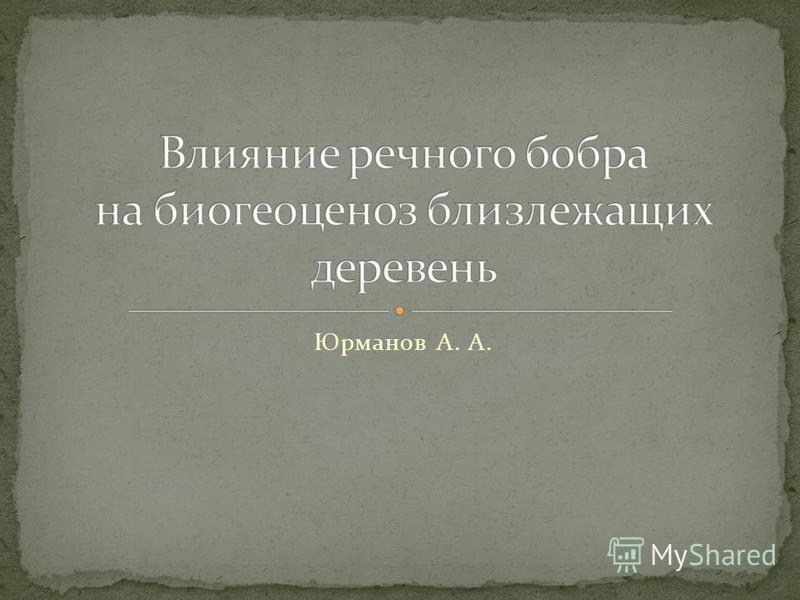 Юрманов А. А.