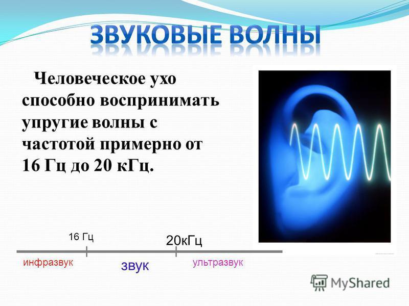 Человеческое ухо способно воспринимать упругие волны с частотой примерно от 16 Гц до 20 к Гц. 16 Гц 20 к Гц инфразвук звук ультразвук