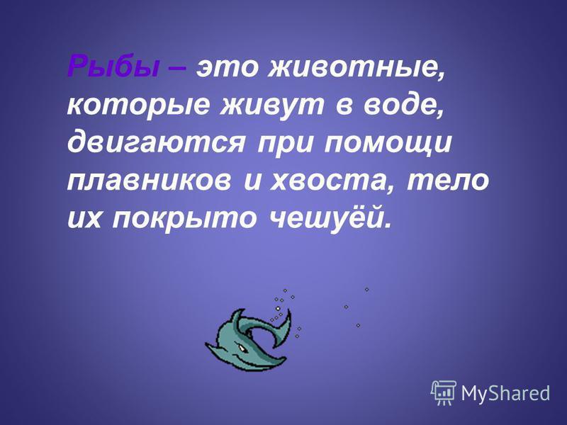 Рыбы – это животные, которые живут в воде, двигаются при помощи плавников и хвоста, тело их покрыто чешуёй.