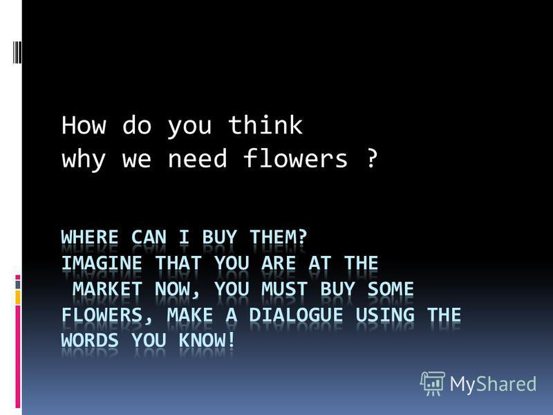 How do you think why we need flowers ?