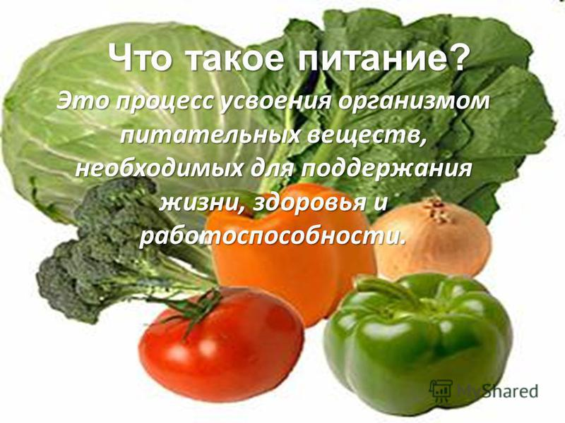 Это процесс усвоения организммом питательных веществ, необходимых для поддержания жизни, здоровья и работоспособности. Что такое питание?
