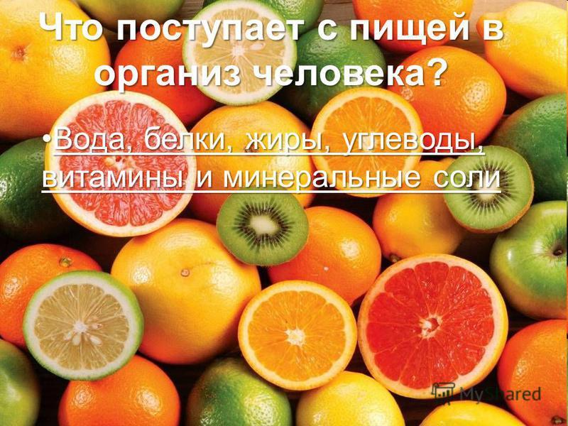 Что поступает с пищей в организм человека? Вода, белки, жиры, углеводы, витамины и минеральные соли Вода, белки, жиры, углеводы, витамины и минеральные соли