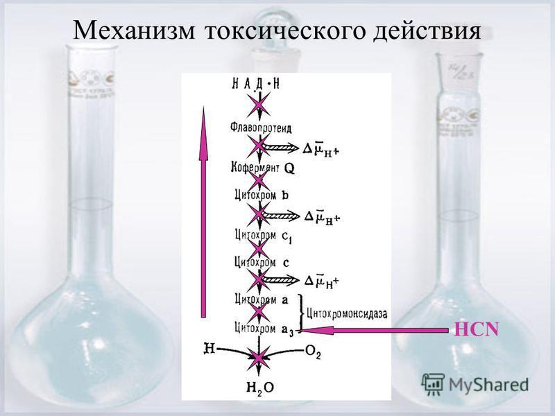 Механизм токсического действия НСN